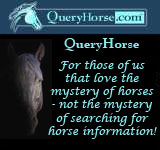 The Search Engine for the World of Horses